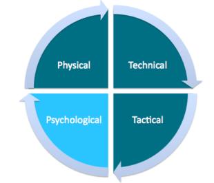 sport-psychology-wheel